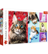 TREFL Palapeli 1000 Kissat