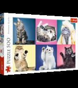 TREFL Palapeli 500 Kissanpennut
