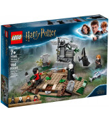 LEGO HARRY POTTER Voldemortin™ nousu 75965