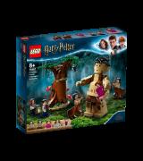 LEGO Harry Potter Kielletty metsä: Pimennon kohtaaminen 75967