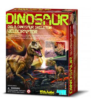 4M KIDZ LABS Velociraptorin luuranko