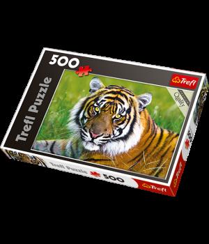 TREFL Palapeli 500 Tiikeri